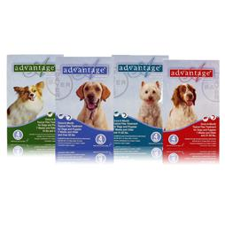 Advantage Flea & Tick Products