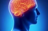 dilantin-brain-epilepsy